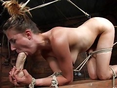 Sasha is beat, plugged and enticed to orgasm
