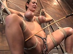 Trina Michaels gets her big tits tied up and shocked