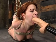Bound hottie gets caned, flogged, tickled, and forced to cum.
