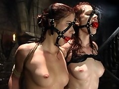 Two sets of red hair, ball gags, and sets of perfect tits